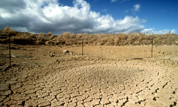 A drought-stricken landscape