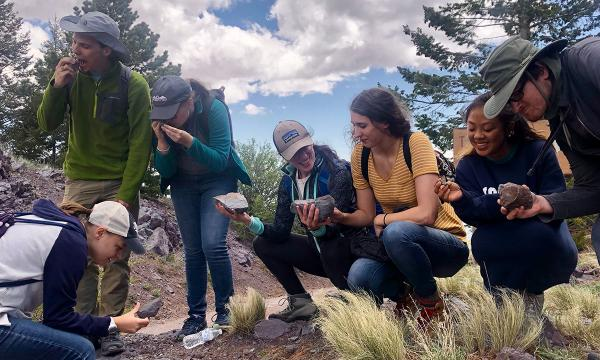 REU students working in the field