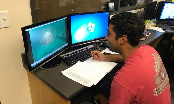 REU student works on their computer