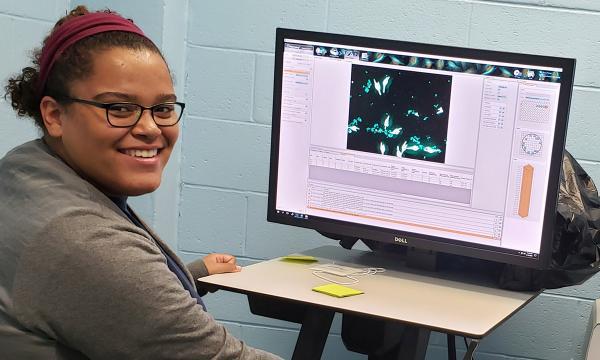 A student intern analyzes data using a computer